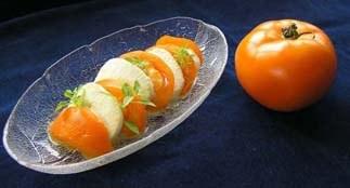 gelbe Tomaten 6_m.jpg