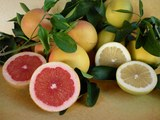 Grapefruit Marsh Seedless