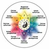 Astro-Biochemie